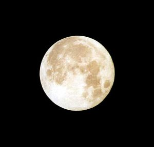Name:  1141736_moon1.jpg