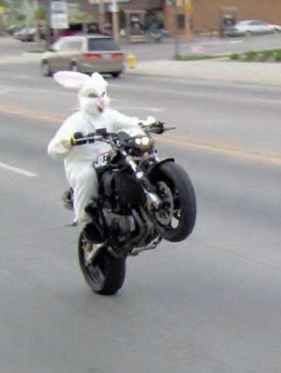 Name:  Easter Bunny Biker.jpg Views: 753 Size:  38.9 KB