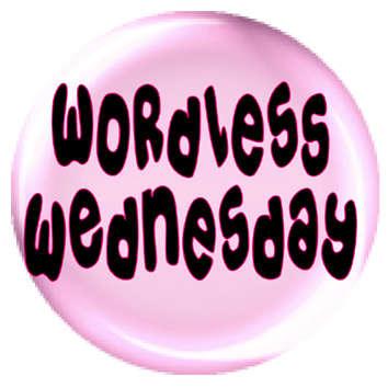 Name:  wordless wednesday.jpg Views: 232 Size:  36.6 KB