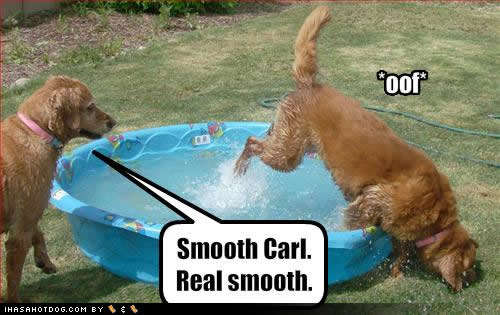 Name:  funny-dog-pictures-smooth-carl1.jpg Views: 214 Size:  30.3 KB