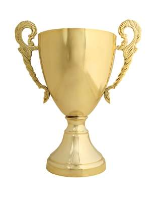 Name:  gold_trophy_0_0.JPG Views: 438 Size:  14.5 KB