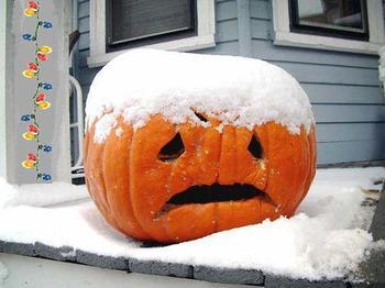 Name:  unhappy pumpkin.jpg Views: 416 Size:  18.0 KB