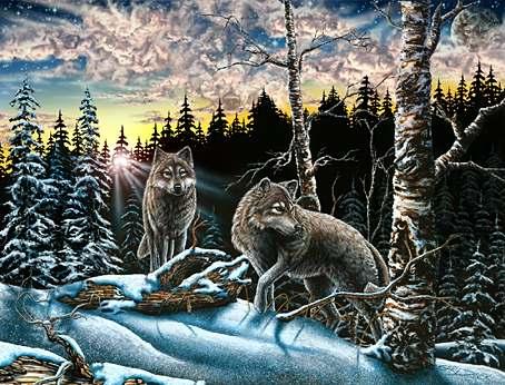 Name:  Hidden Wolves.jpg Views: 141 Size:  45.6 KB