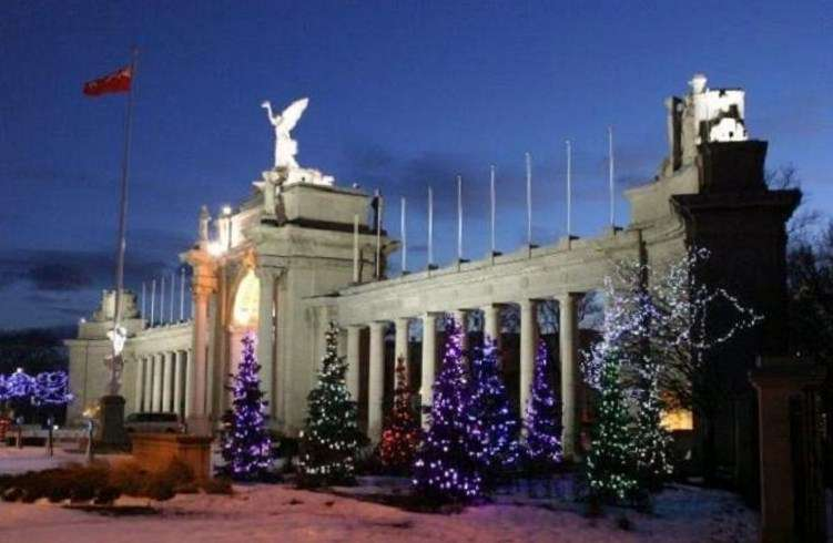 Name:  Pretty Christmas Trees at CNE.jpg Views: 359 Size:  62.7 KB