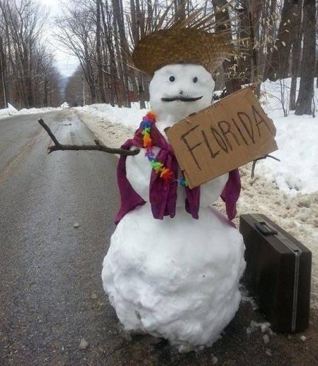 Name:  snowman to Florida.jpg Views: 228 Size:  44.0 KB