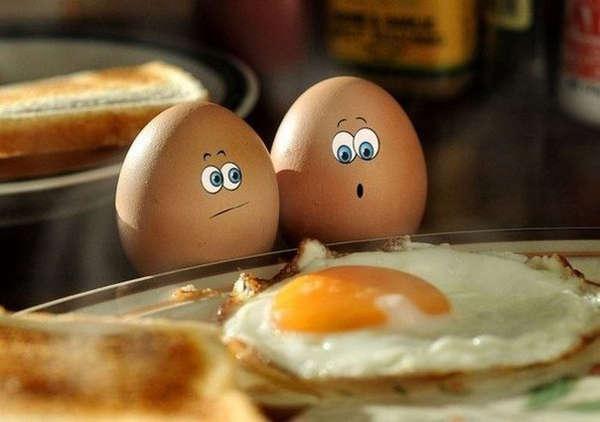 Name:  eggs.jpg Views: 318 Size:  28.1 KB