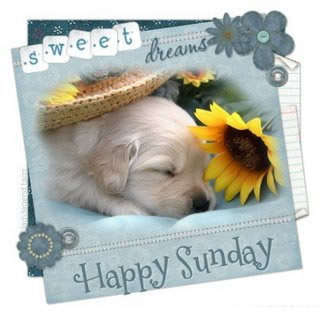 Name:  sweet-happy-sunday.jpg