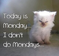 Name:  don't do Mondays.jpg