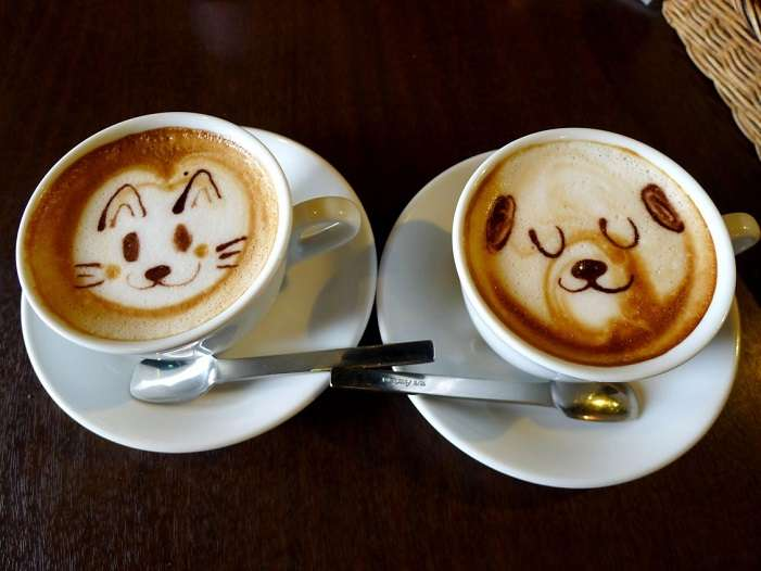 Name:  10867_Funny-coffee-with-dog-and-cat-face.jpg Views: 151 Size:  34.1 KB