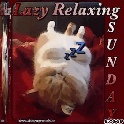 Name:  SUNDAY Lazy relaxing DbN.jpg Views: 482 Size:  18.1 KB