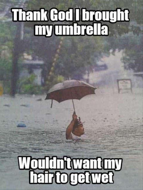 Name:  funny-umbrella-flood-rain-water-man1.jpg Views: 98 Size:  39.3 KB