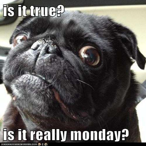 Name:  is it really Monday.jpeg Views: 62 Size:  37.6 KB