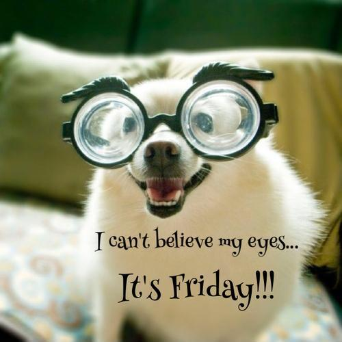 Name:  i-cant-believe-my-eyes-its-friday-quote-1.jpg Views: 58 Size:  30.8 KB