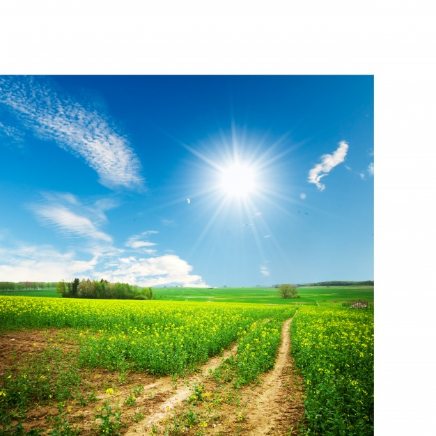 Name:  dirt-way-in-a-sunny-day_1160-884.jpg Views: 35 Size:  139.5 KB