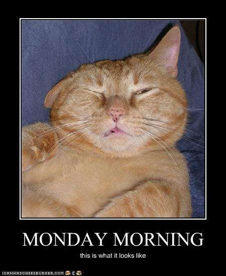 monday quotes funny. funny monday morning quotes.