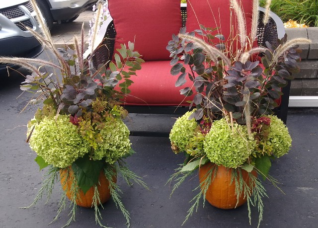Recycle your garden cheap fall decorations for Inexpensive garden decor