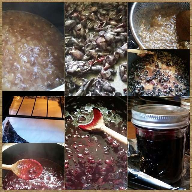 Name:  grapejam.jpg