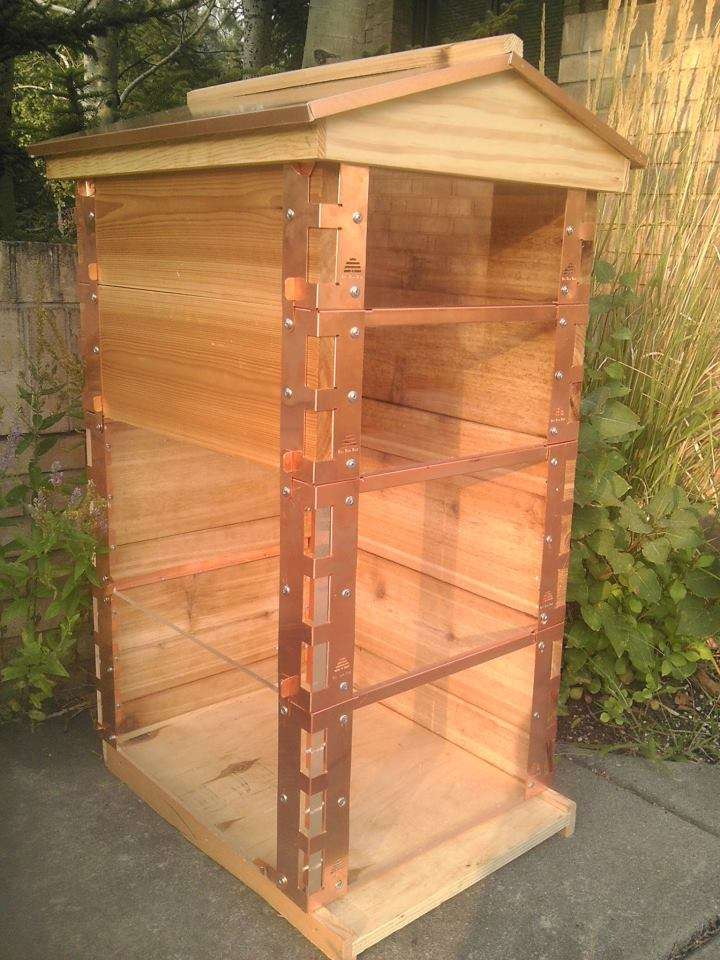 Please vote the eco bee box the most modern maintenance for Modern hive