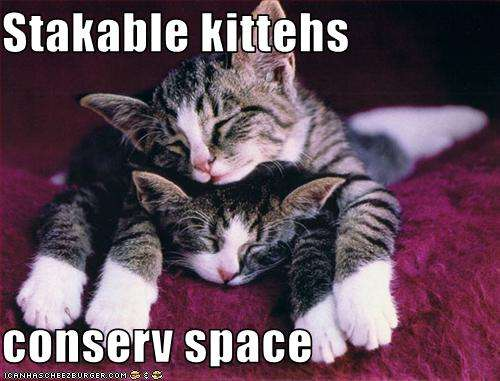 Name:  funny-pictures-stackable-cats-conserve-space.jpg Views: 86 Size:  33.3 KB