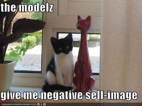 Name:  funny-pictures-self-image-cat.jpg Views: 123 Size:  26.4 KB
