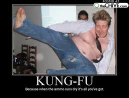 Name:  kungfu.jpg