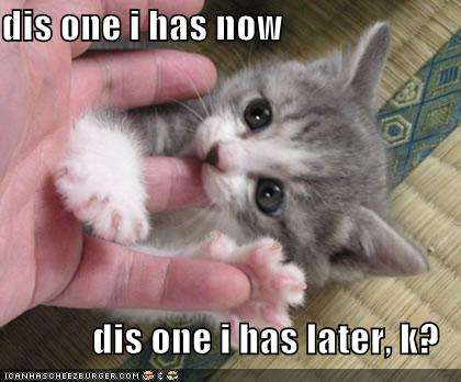 Name:  funny-pictures-kitten-eats-finger-later.jpg