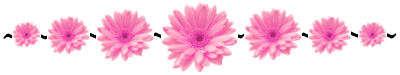 Name:  flower-divider.jpg Views: 5821 Size:  12.3 KB