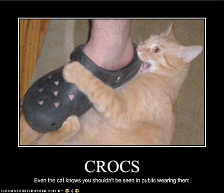 Name:  lolcats-71-42.png Views: 273 Size:  152.1 KB
