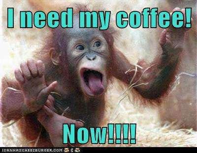 Name:  I-need-my-coffee-now.jpg Views: 242 Size:  23.3 KB