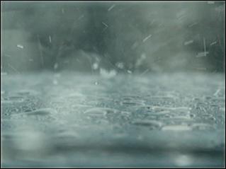 Name:  rain.jpg Views: 471 Size:  21.2 KB