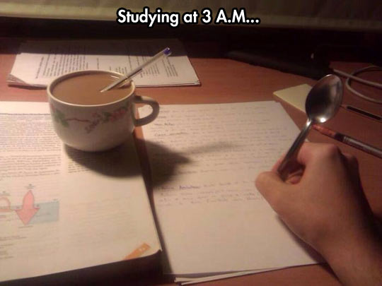 Name:  funny-studying-tea-pen-night.jpg