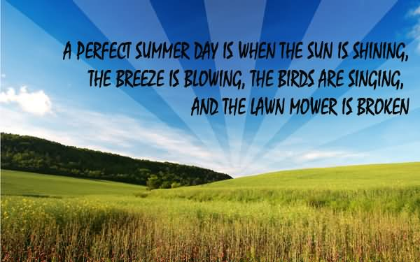 Name:  a-perfect-summer-day-is-when-the-sun-is-shining.jpg Views: 259 Size:  40.9 KB