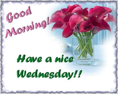 Name:  77309-Good-Morning-Have-A-Nice-Wednesday.jpg Views: 370 Size:  80.6 KB