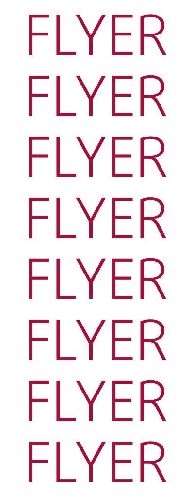 Name:  FLYERLONG.png Views: 234 Size:  41.2 KB