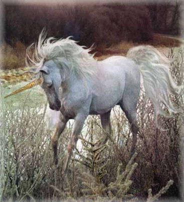 Name:  unicorn8.jpg Views: 342 Size:  28.3 KB