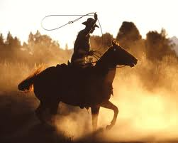 Name:  cowboy.jpg Views: 233 Size:  5.8 KB