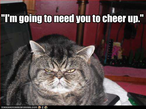 Funny Meme To Cheer Someone Up : Funny pics to cheer someone up memes