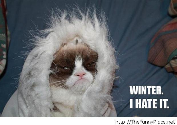 Name:  I-hate-winter.jpg Views: 1506 Size:  35.6 KB