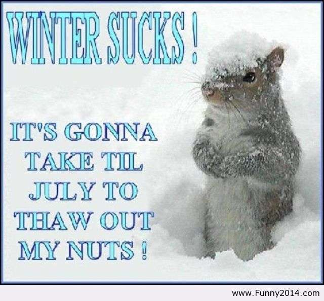 Name:  I-hate-winter-quote.jpg Views: 21032 Size:  49.3 KB