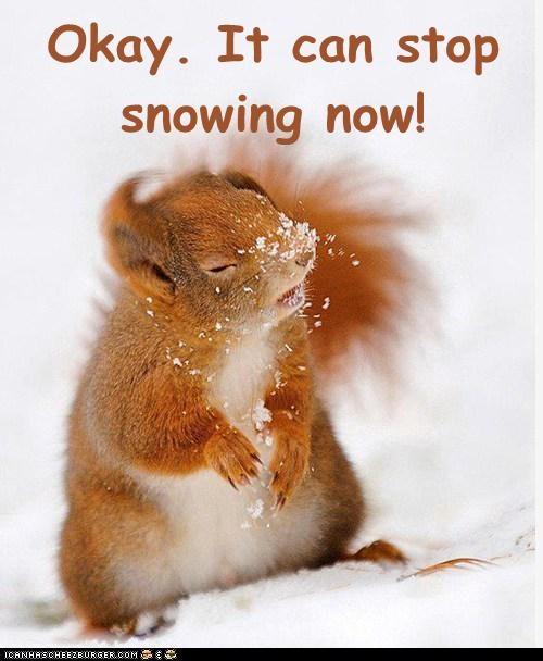 Name:  stop-snowing.jpeg Views: 340 Size:  46.7 KB