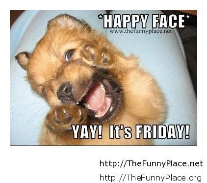 Name:  Happy-friday-to-everybody-funny-picture1.jpg Views: 46 Size:  34.0 KB