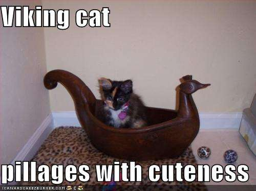 Name:  funny-pictures-cute-viking-cat.jpg Views: 67 Size:  22.3 KB