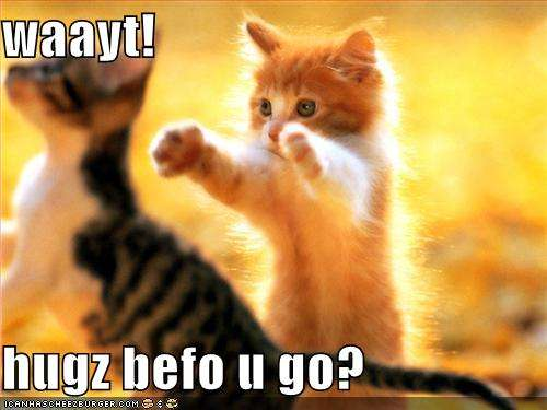 Name:  funny-pictures-kittens-hugs-before-you-go.jpg Views: 367 Size:  24.7 KB