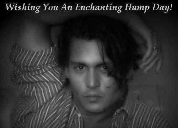 Name:  have-an-enchanting-hump-day-johnny-depp-10857518-628-452.jpg