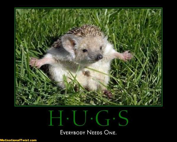 Name:  hugs-give-take-need-touche-motivational-1312123129.jpg
