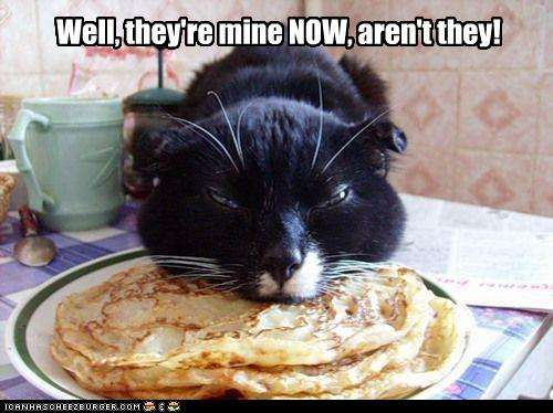 Name Funny Pictures Cat Eats Your Pancakes Views Size