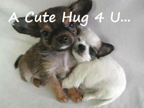 Name:  hug-scraps-a-cute-hug-for-you.jpg