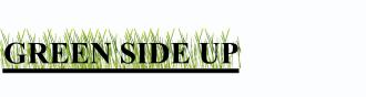Name:  Green Side up!.jpg Views: 80 Size:  5.0 KB