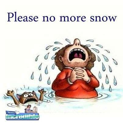 Hate Snow Funny Quotes. QuotesGram | Funny Quotes