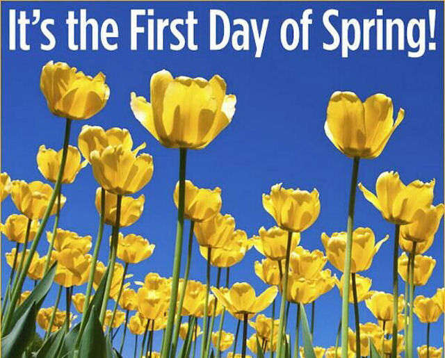Name:  162284-It-s-The-First-Day-Of-Spring.jpg Views: 77 Size:  72.3 KB